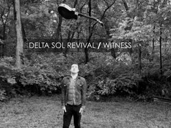 Image for Delta Sol Revival