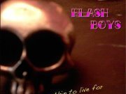 Image for The Flash Boys