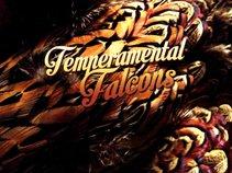 Temperamental Falcons