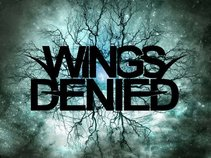 Wings Denied