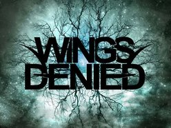 Image for Wings Denied