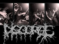 Image for DISGORGE OFFICIAL