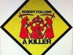 Image for Nobody Follows A Killer