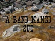 Image for A Band Named Sue