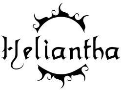 Image for HELIANTHA