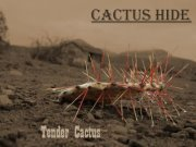 Image for Cactus Hide