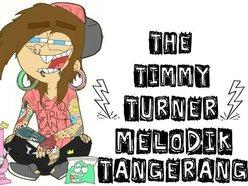 The Timmy Turner Melodik Punk Merdu Tangerang Reverbnation