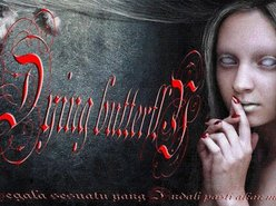 Dying Butterfly