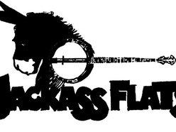 Jackass Flats
