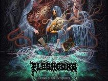 Fleshgore (Official)