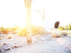 Lisa Eastman/ 'The Hidden ONE'