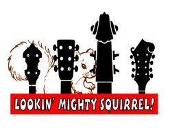 Image for Lookin' Mighty Squirrel!