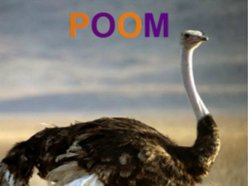 Image for POOM