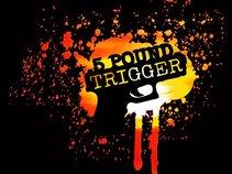 5 Pound Trigger
