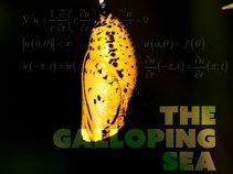 The Galloping Sea