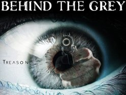 Image for Behind the Grey