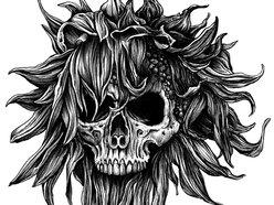 Image for Sunflower Dead