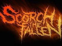 Scorch The Fallen