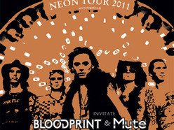 Image for Blood Print