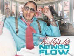 NengoFlow' Songs