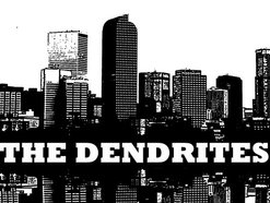 Image for The Dendrites