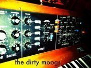 Image for The dirty moogs