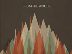 Image for From the Woods (Project)