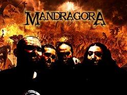 Mandragora Reverbnation