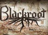 BLACKROOT