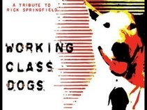 Working Class Dogs