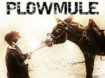 PLOWMULE
