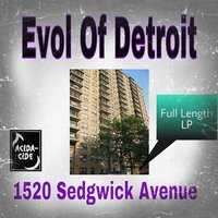 1423705371 evol of detroit