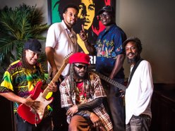 Image for The Tropics Reggae Band