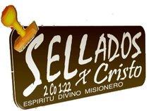 Espíritu Divino Misionero