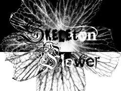 Image for Skeleton Flower