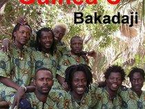 Guinea C