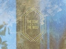 the dove & the wolf