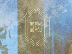 Image for the dove & the wolf