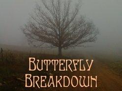 Image for Butterfly Breakdown