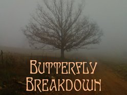 Image for Butterfly Breakdown