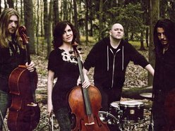 Image for Cello Fury