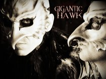 Gigantic Hawk