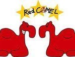 Image for Red Camel