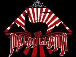 Image for Malai Llama