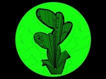 Chuck die Pflanze