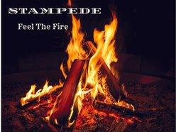 Image for STAMPEDE