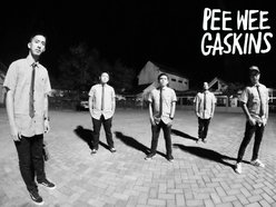 Image for Pee Wee Gaskins