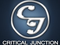 Image for Critical Junction