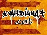 VALLDIGNA.CAT