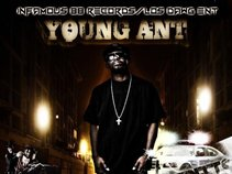 TheRealYoungAnt